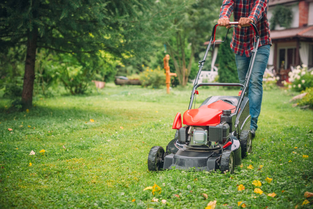 The Best Battery Lawn Mower for 2021